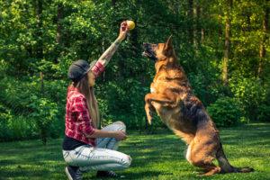 Glucosamina e condroitina: alleati per le articolazioni