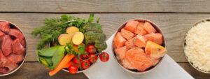 Invecchiamento: una guida sull'alimentazione nella terza età